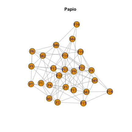 Primate social networks: basics of visualization and analysis