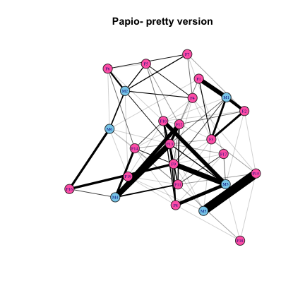 Primate social networks: basics of visualization and analysis with igraph